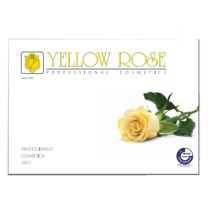 Yellow Rose Catalogus Nederlands